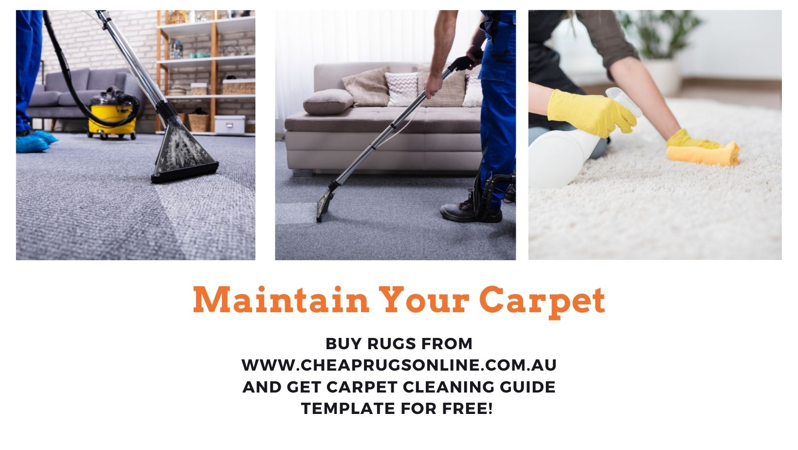 Best Carpet Cleaning Guide